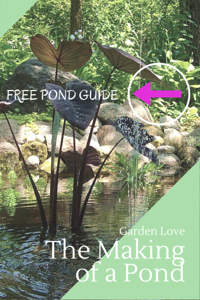Free Pond Guide
