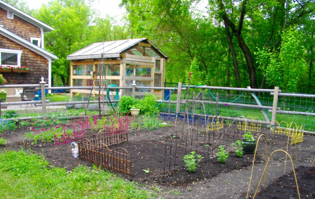 vegetable garden planted and ready to grow