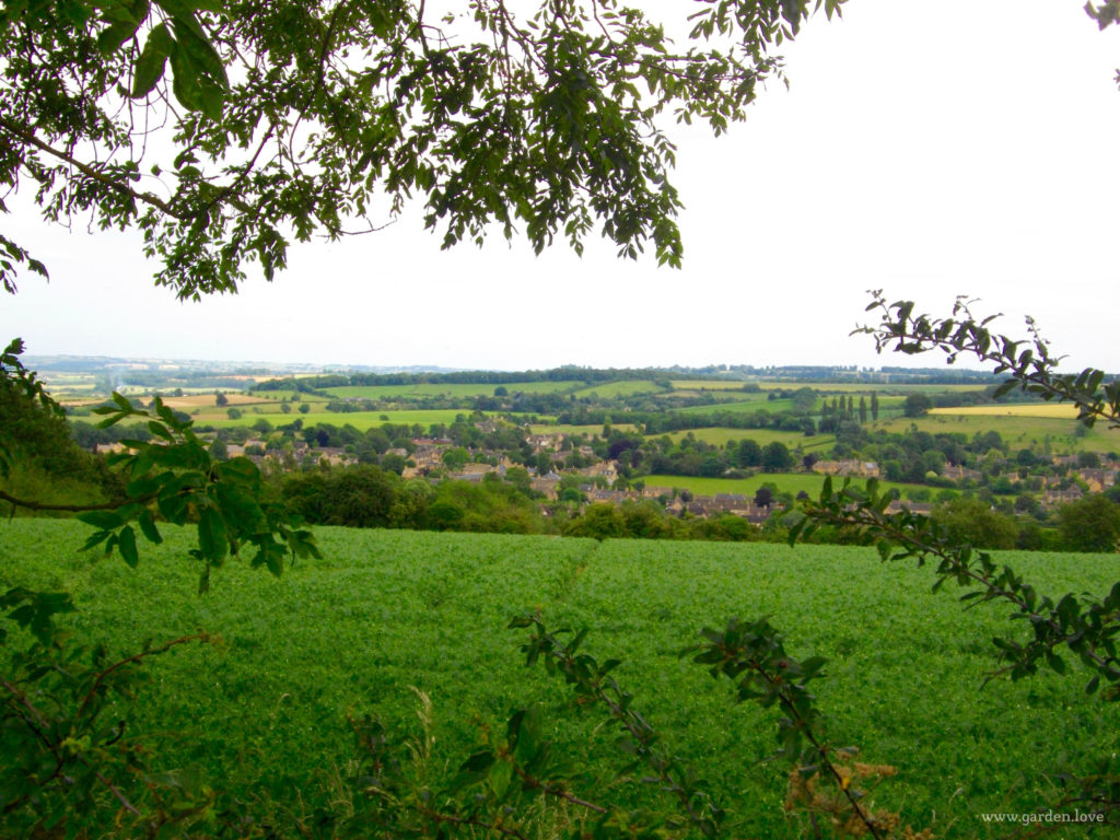 Chipping Campden in the distance